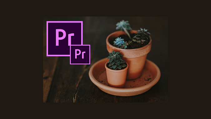 exporting videos from premiere pro